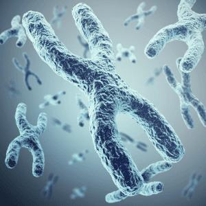 blue photo of telomeres