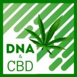 product image CBD DNA