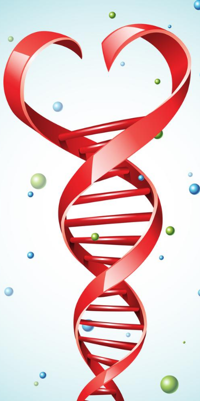 dna red helix heart at top